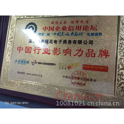 中国行业影响力品牌
