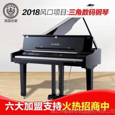 世爵HD-W100三角电钢琴商用别墅智能三角电钢琴