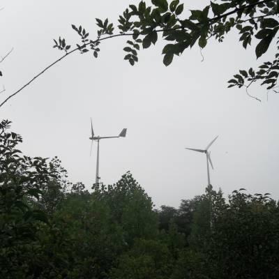 石家庄 晟成定做1000瓦 小型风力发电机 永磁发电机