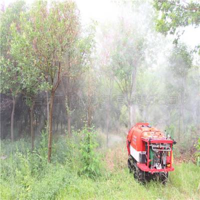 风送式果树打药机生产厂家 多方向树木打药机 自走式履带打药机厂家