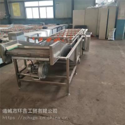 果蔬清洗设备,蔬菜清洗线厂家定制直销
