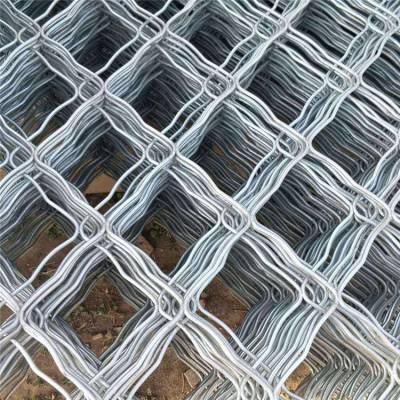 陕西荷兰网 兴来浸塑荷兰网现货 铁丝网片图片