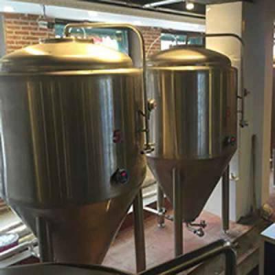 山东道尔精酿啤酒设备