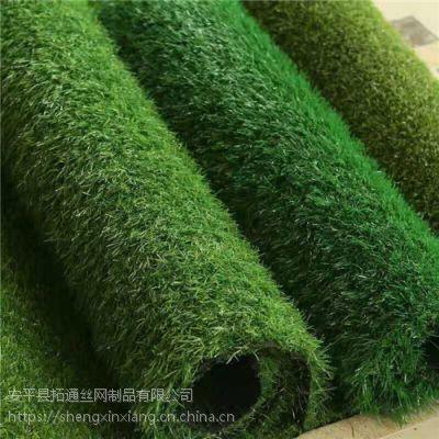 深三色草高1.5cm加密背胶4*25米别墅用绿化 屋顶花园草坪 机器烘道烤胶草坪