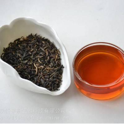 红茶提取物 红茶粉 10:1 兰州沃特莱斯供应