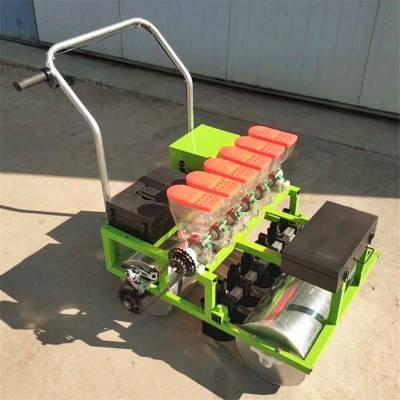 农用菜籽播种机 六行汽油白菜菠菜精密播种机 牵引式蔬菜精播机