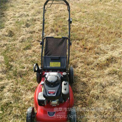 汽油草坪修剪机 多用途剪草机图片