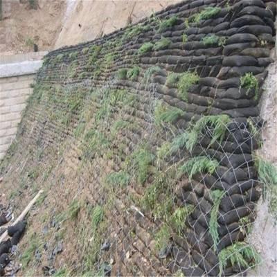 80cm生态袋在云南公路护坡的养护技巧
