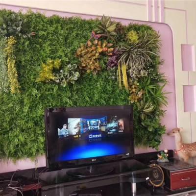 室内植物墙多少钱-泉州植物墙多少钱-美尚园艺-品质保证