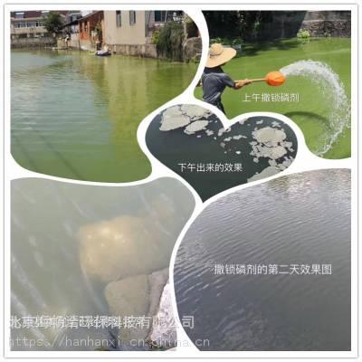 江苏太湖蓝藻青苔去除 锁磷剂厂家直供