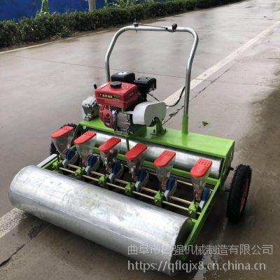 农业新产品蔬菜播种机 手推式汽油精播机价格 种植机 鲁强机械
