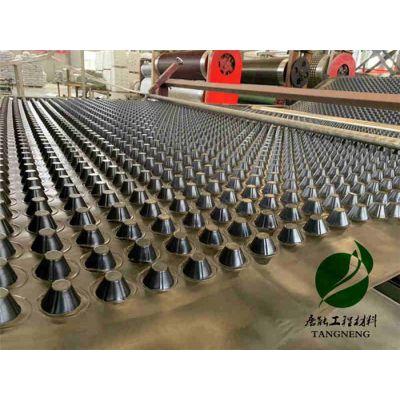 滤水板-塑料滤水板-唐能(优质商家)