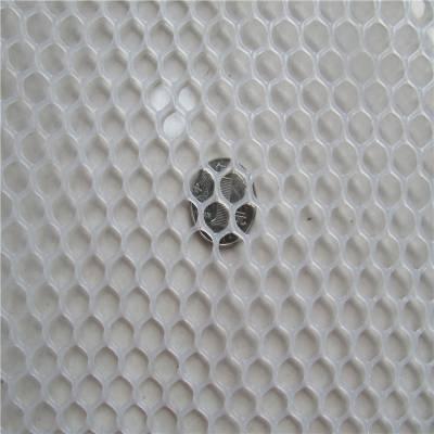家禽养殖塑料网 养鸡塑料网 漏粪塑料网