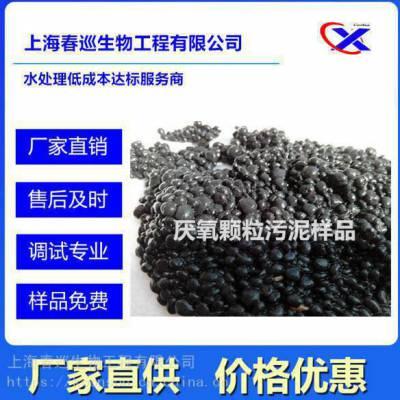 柠檬酸厌氧颗粒污泥 厂家批发 上海春巡生物