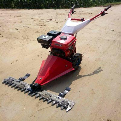 厂家直销手推式割草机 大宽幅手推柴油草坪修剪机