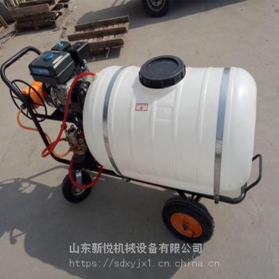新悦果园高压远射程打药机 卫生防疫消毒机 100L大棚农药喷雾机