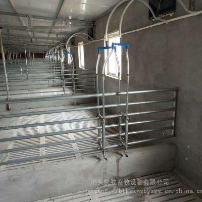 养猪自动喂料设备料线机械 育肥猪场自动化料线