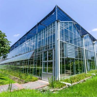 蔬菜温室大棚膜连栋连体玻璃大棚骨架钢架配件