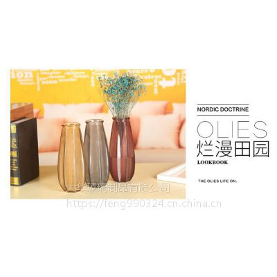 简约时尚玻璃花瓶宏华透明创意干花插花水培花器彩色欧式摆件