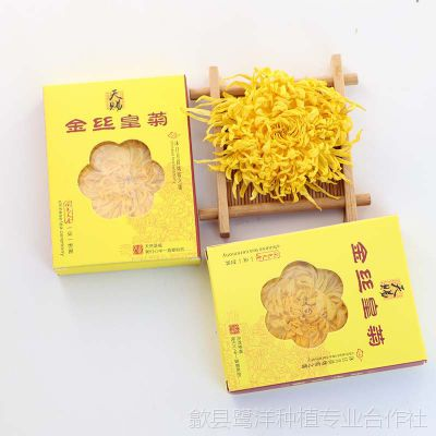 优质徽州金丝皇菊 一朵一杯花茶菊花茶单朵盒装批发量大从优