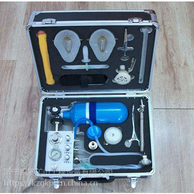 矿用MZS30自动苏生器厂家直销 凯展苏生器