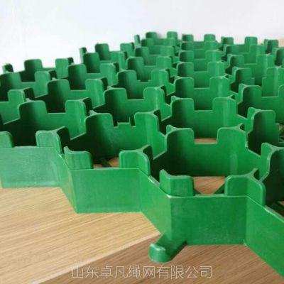 山东植草格厂家 塑料植草格厂家
