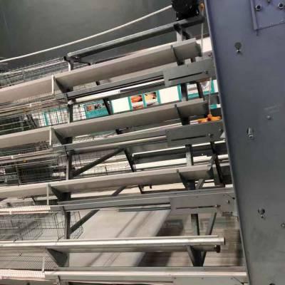 销售9TLD 系列阶梯式蛋鸡设备 产量大 耗能低 田瑞