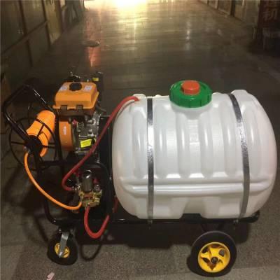机动喷雾器价格 手推电动打药机 框架式喷雾器厂家