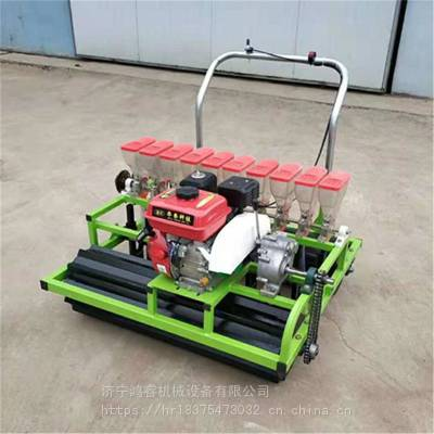 多行汽油款播种机 手推电动蔬菜种植机 带滴灌的播种机