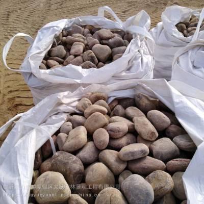 烟台鹅卵石价格 变压器用鹅卵石垫层系列鹅卵石滤料哪家好