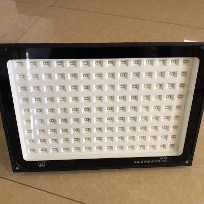 ZY609上海世纪亚明小功率LED投光灯30W