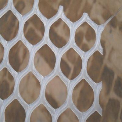 养鸡塑料平网 塑料养鸡网 塑料平网厂家