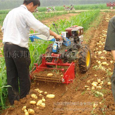 邦腾生产小型手扶车带动的马铃薯收获机破损率低