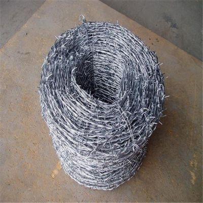 圈果园刺线 刺绳现货 刺绳防护网