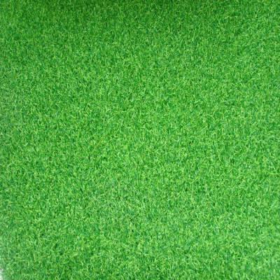 栾城草坪基地草坪怎么样_人造草坪草皮_草皮和草坪