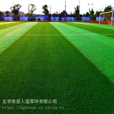 北京塑料草坪出售假草坪厂家