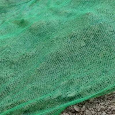 建筑施工盖土网 定制遮阳盖土网 绿色扬尘盖土网价格