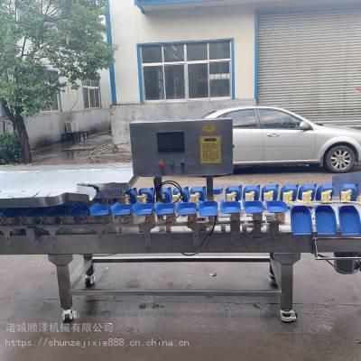 全自动白参大小分选机 白参重量分级机 重量分级设备