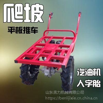 运水果下山设备 平板式的农用工具 奔力SL-MR9