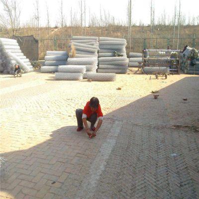 养殖场围栏网兴来 体育场勾花网材质 围栏网规格