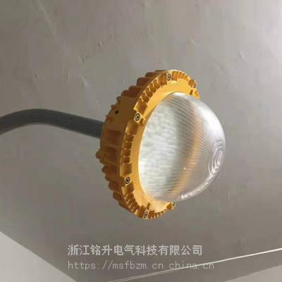 火电厂防爆护栏灯40W 防爆灯LED50w护栏式安装 50W防爆LED平台灯