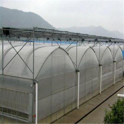 河南连栋温室价格 厂家直销定制设计