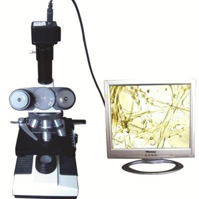 高配植物病虫害检测仪SYR-BCHS