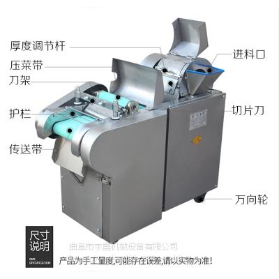 辣椒切丝机切段机 蒜苔豆角不锈钢切段机 多功能切丝切丁切片机