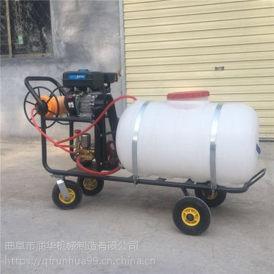 手推式消毒打药喷雾器 果园自走式喷药机 远射程杀菌喷雾器