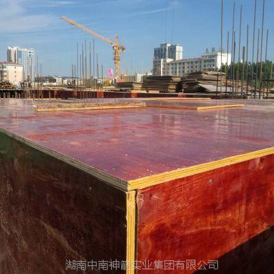 建筑模板 厚薄均匀 松木面桉木芯 表面光滑平整易脱模