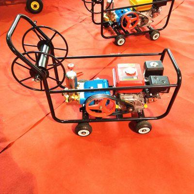园林植保机械喷雾器/汽油手推式打药机/多功能农用喷药机价格