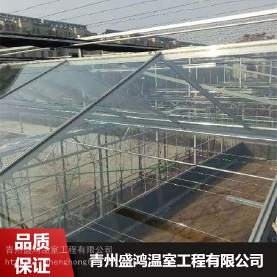 智能光伏温室_蔬菜种植光伏温室_抗风雪能力强_盛鸿生产基地