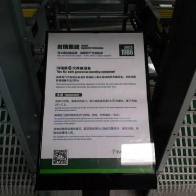 聊城全自动养鸡设备特价批发 田瑞牧业