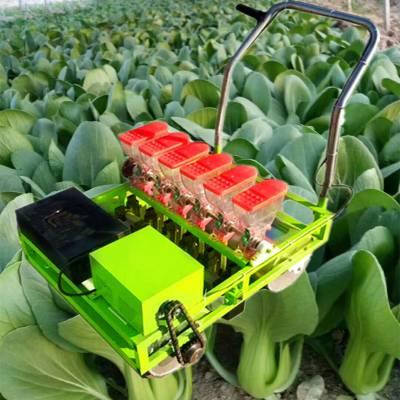 促销小型菠菜播种机 小型菜心播种机 大棚电动播种机供应